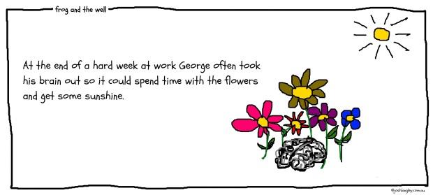 Georges brain