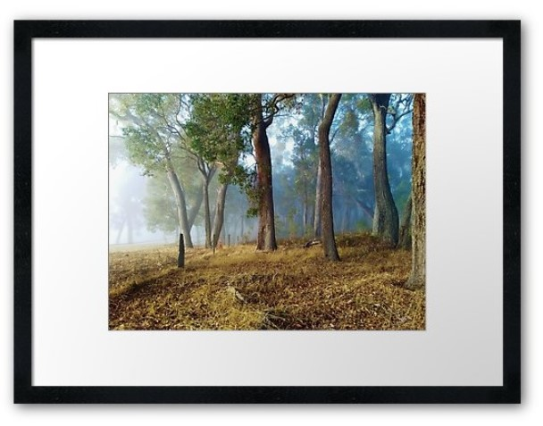 mists of long framed